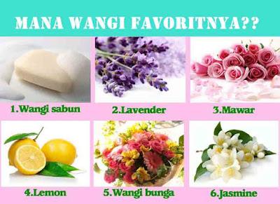 Wangi, Harum, Bau, bunga, Lavender, karakter orang