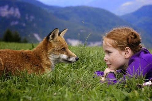 film per bambini gratis a Milano a Pasqua: la volpe e la bambina in hangar bicocca
