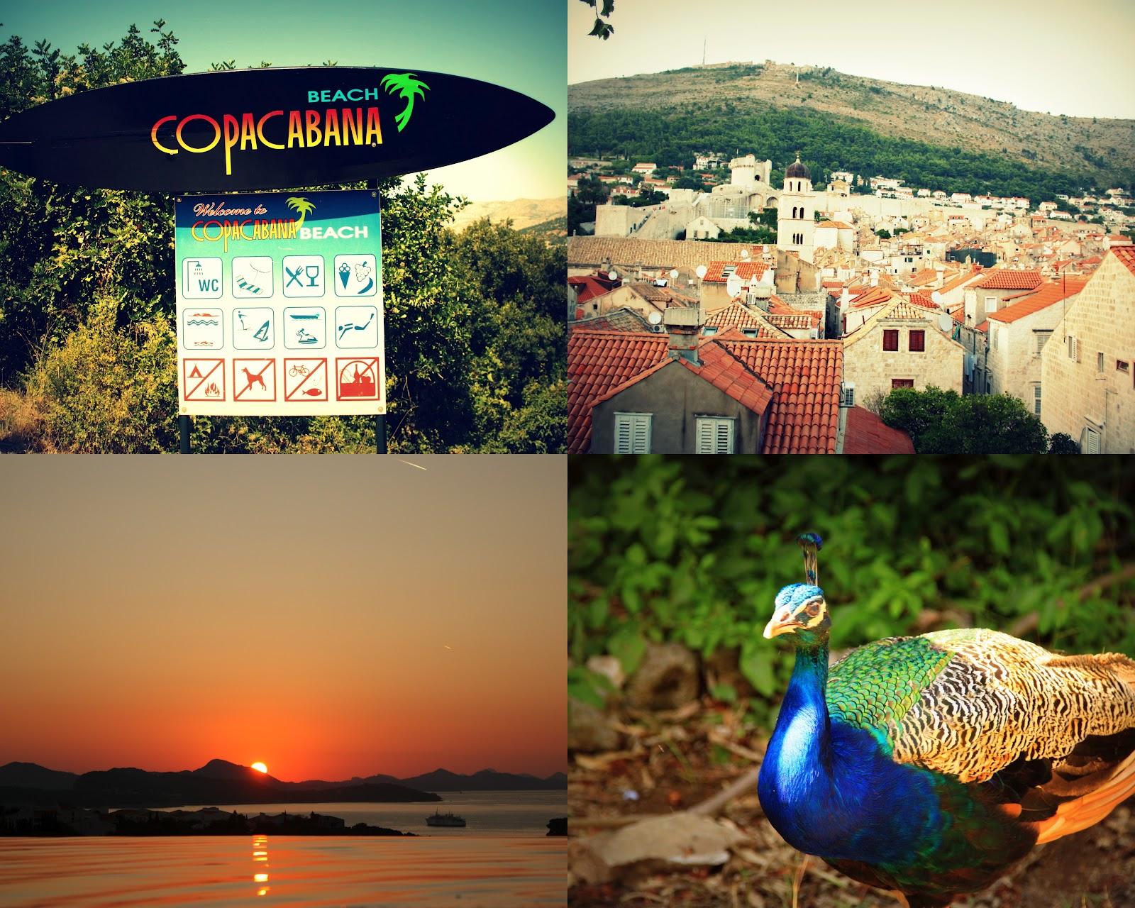 Hırvatistan Gurme Rehberi Bölüm 2 Küçük Martha Iş Başında