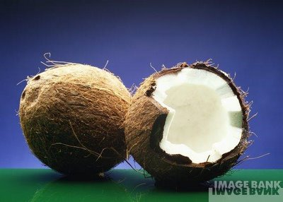 how to tell if a coconut is good