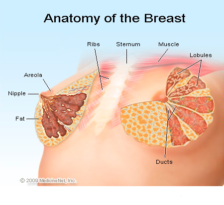 how to read breast cancer diagrams