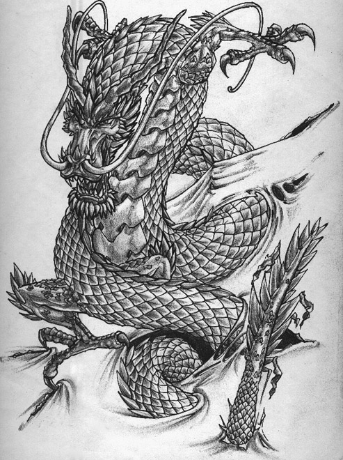 World 39 s most popular tattoo for female japanese dragon for Dragon tattoo drawings