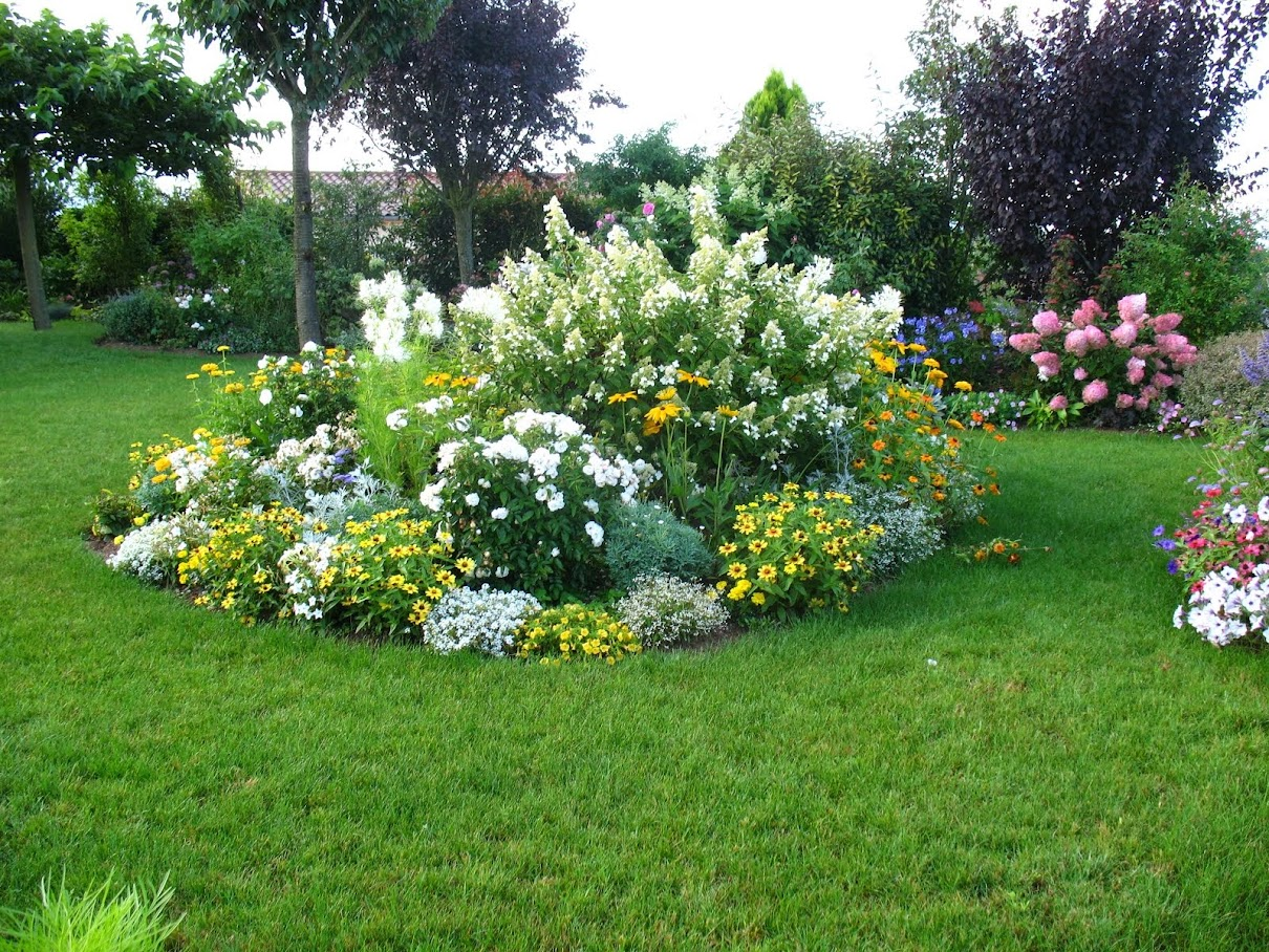 roses du jardin de ch neland arbustes floraison printani re. Black Bedroom Furniture Sets. Home Design Ideas