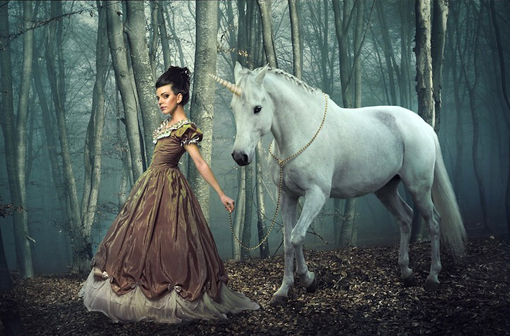 Image result for photograph fairy tale