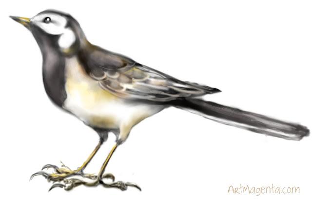 Sädesärla är en fågelmålning av ArtMagenta