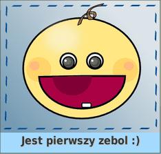 Zebole Bastiana
