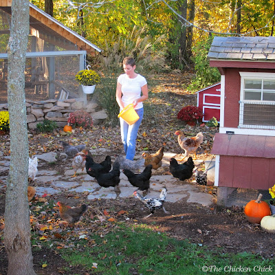 There is no need to dilute it or mask it with some other scent; the vinegar smell dissipates very quickly, leaving the coop sparkling clean ... at least until the chickens return.