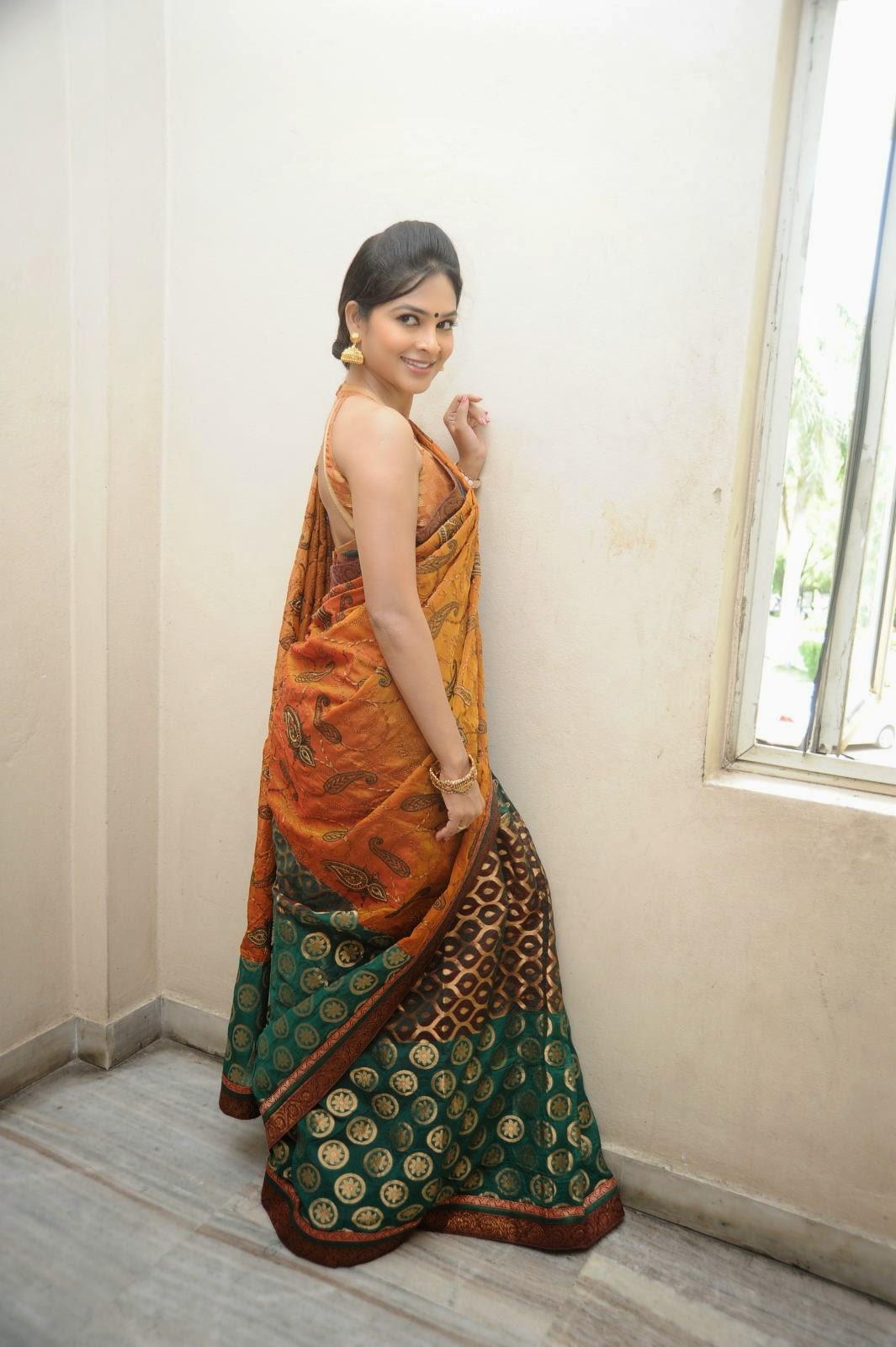 Madhumitha sizzling pics in saree-HQ-Photo-13