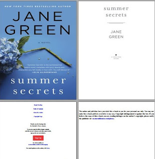 download Summer Secrets book epub
