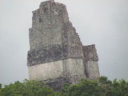 Temple 4 -- Highest Point in Tikal