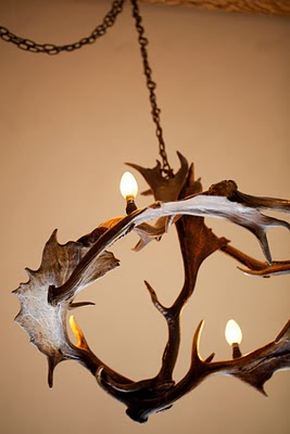 Antler chandeliers photographs la rock branding by john blackwell antler chandeliers mozeypictures Image collections