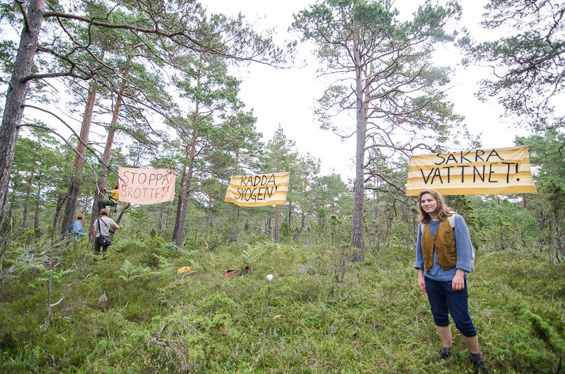 Aktioner för Ojnareskogen, i Ojnareskogen. Foto: Olof Åström.
