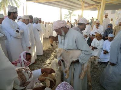 mercado ganado nizwa