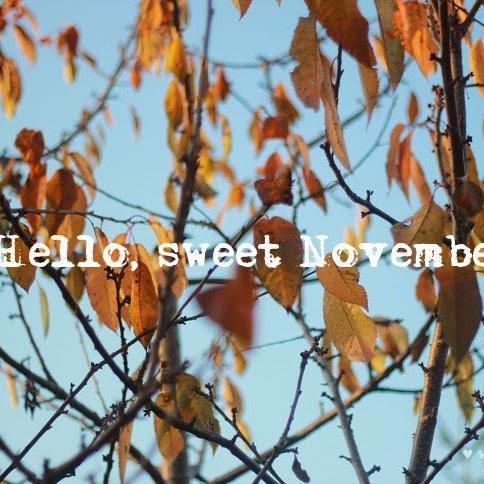 Hello, sweet November. Czekoladowa rolada z bananem.
