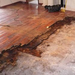Lantai Kayu yang Rusak