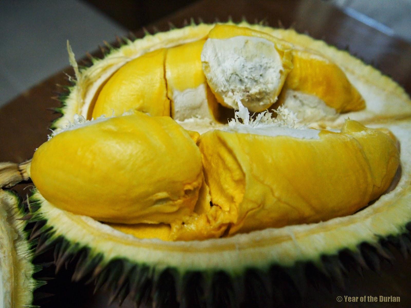 year of the durian durian season in yangon myanmar photo essay. Black Bedroom Furniture Sets. Home Design Ideas