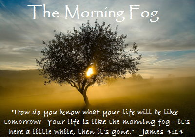 The Morning Fog