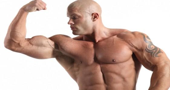 سوف نتحدث فى هذا القسم عن كل الاساليب و الخبايا التائهة عن اذهان الناس التى سوف تساعد جسمك على بناء العضلات فى وقت قياسى.