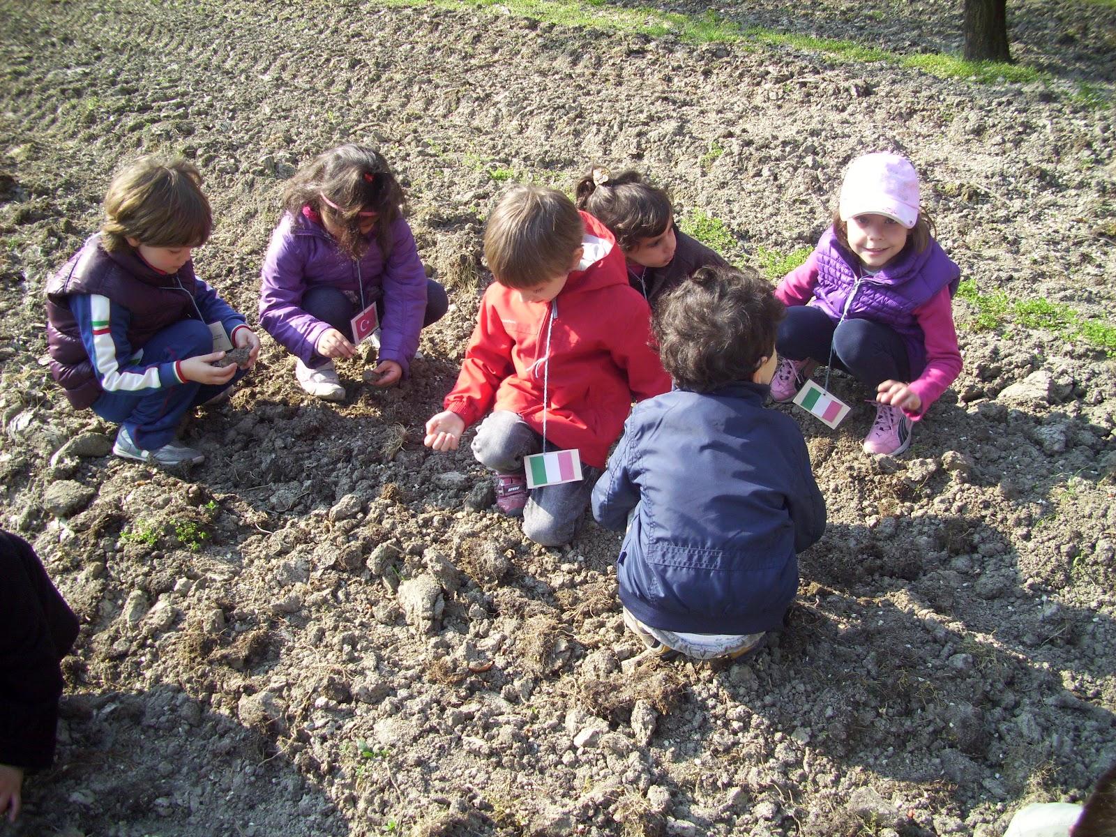 scuola gallini voghera lombardy - photo#1