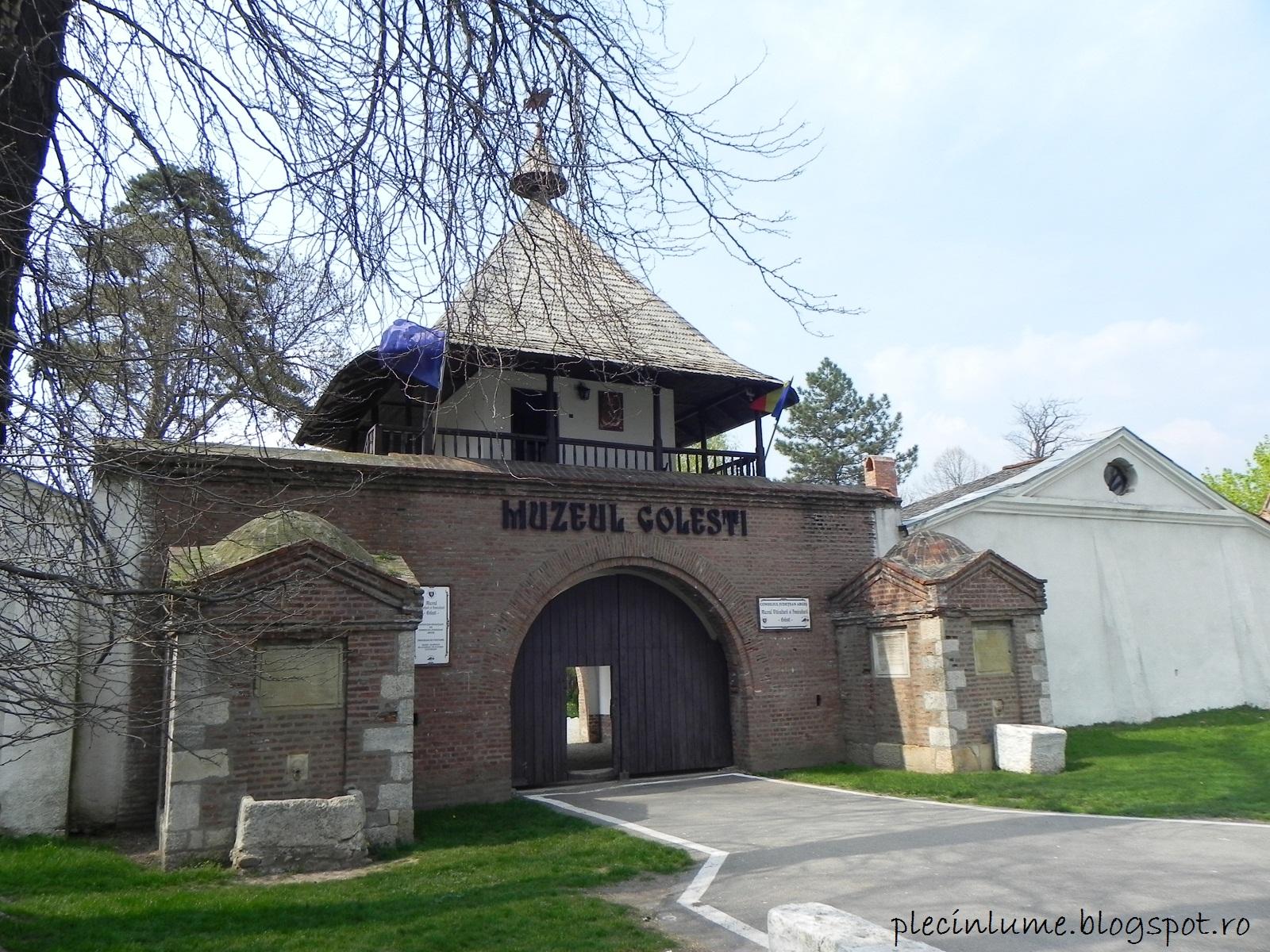 Intrarea in Muzeul Golesti