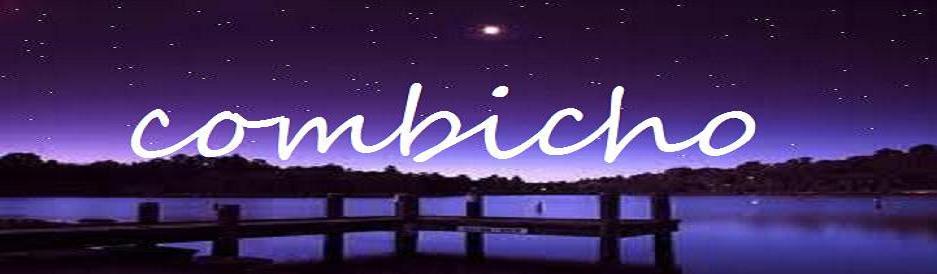 combicho