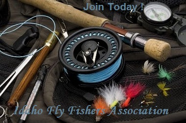 Idaho Fly Fishers Associaton