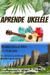 Próximo curso 10 y 11 junio ÁVILA