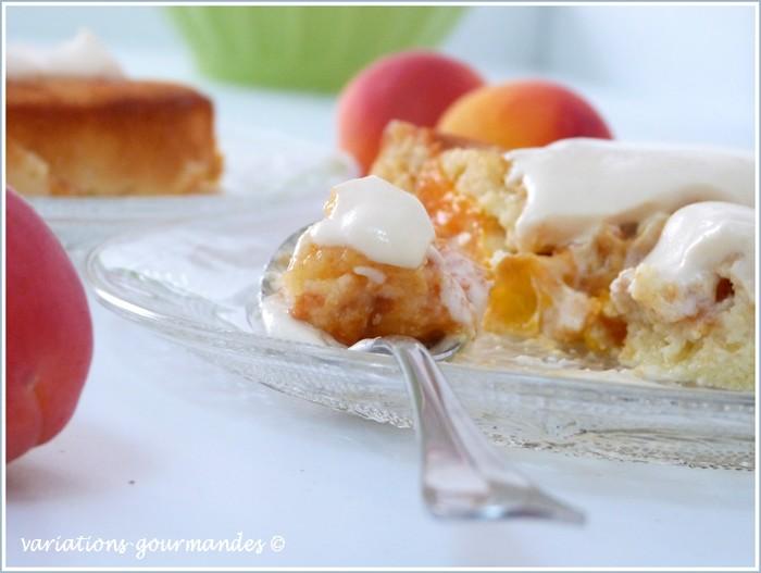 Gateau aux abricots sans gluten