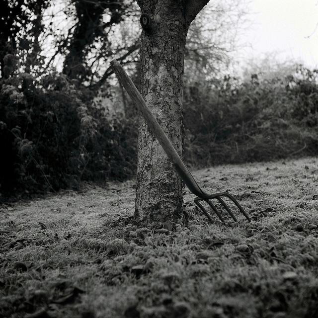 Черно-белые фотографии Мартина Фоули