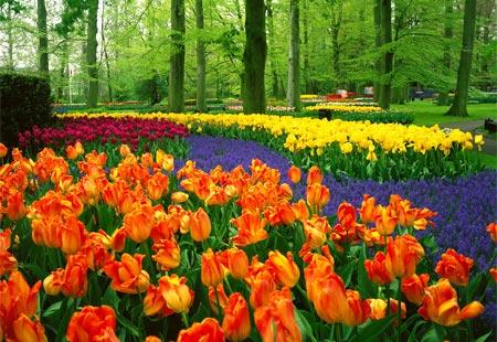 Garden design most beautiful flower garden in the world for Most beautiful flower gardens in the world