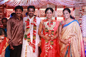 Amala Paul Al Vijay wedding Photos gallery-thumbnail-15