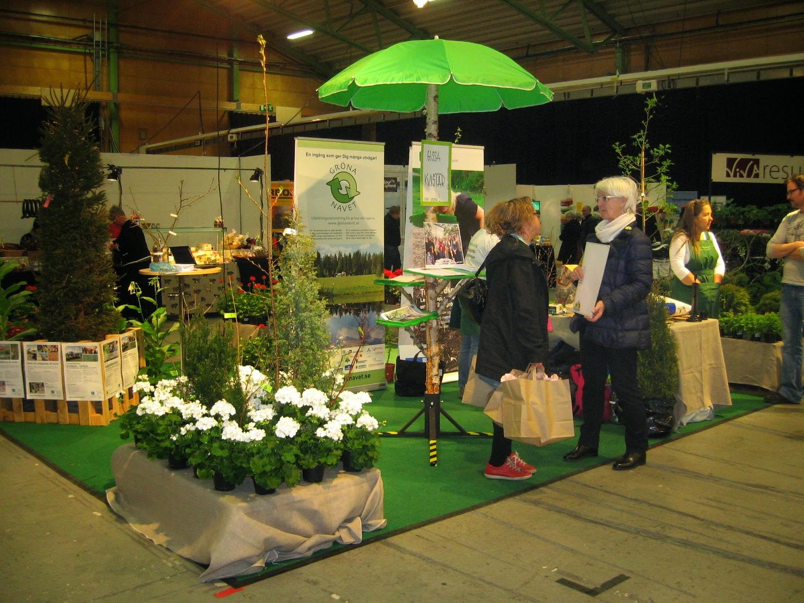 Apel och astrakaner: nolia trädgård 2014