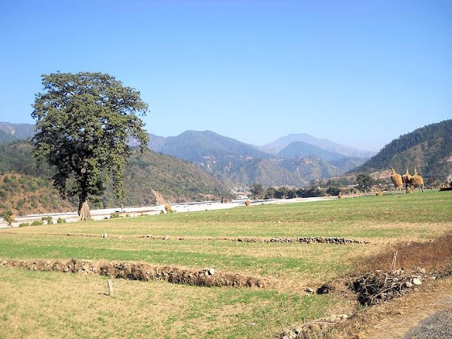 Bandugrisain village Doti