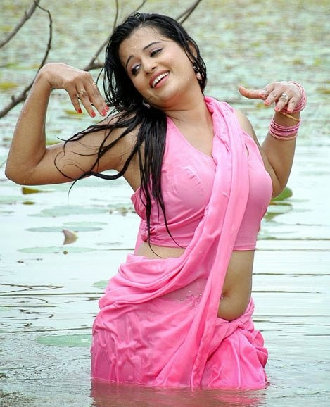 sexy sari actress wet navel