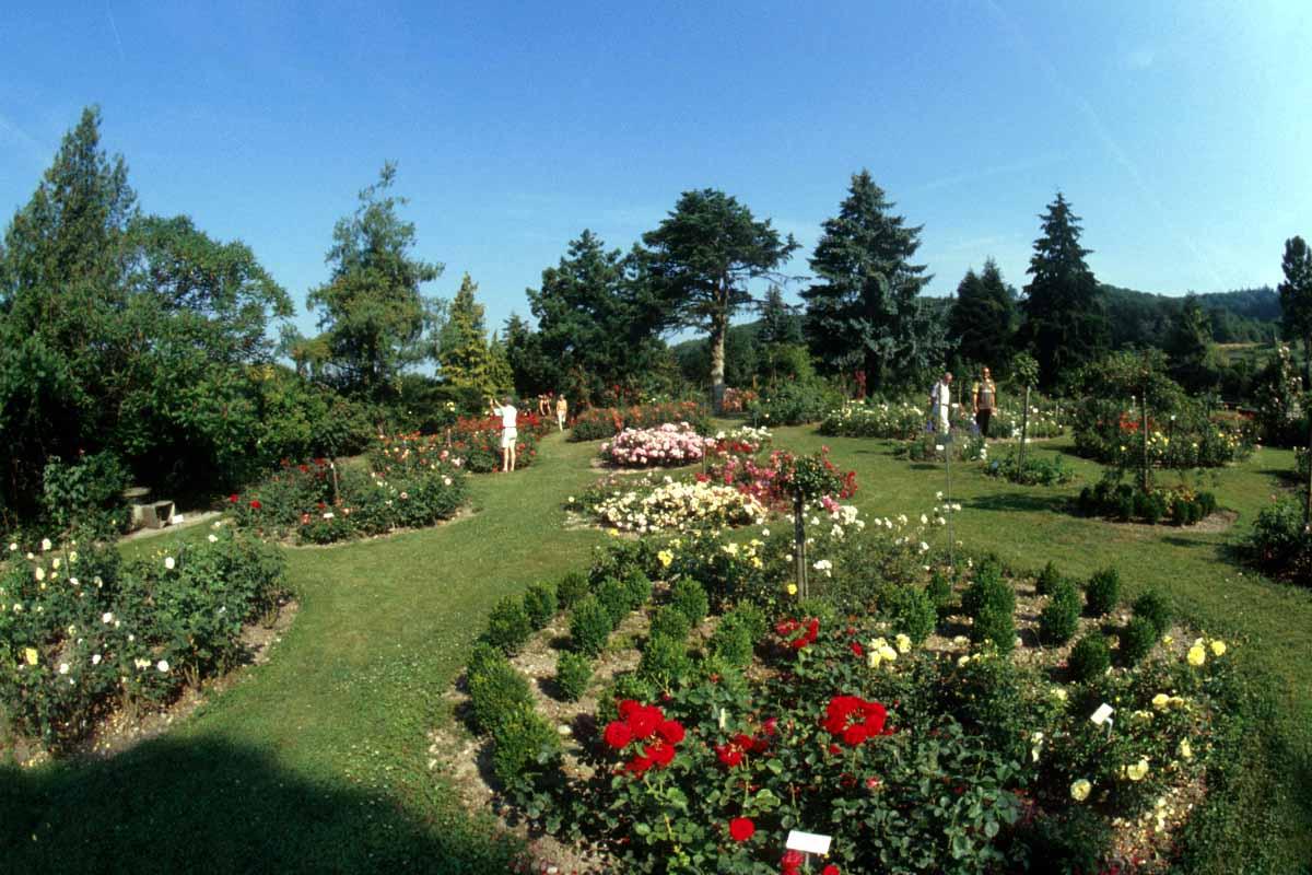 Flower Garden Home Decorating