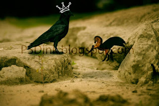 "Photomanipulations: Cara membuat ""Crow is King"" dengan Photoshop"