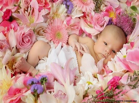 Photo bébé mimi dans les fleurs