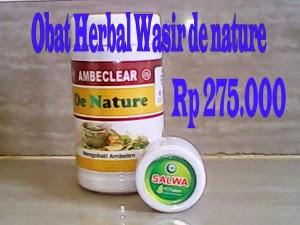 Obat Herbal Benjolan Wasir