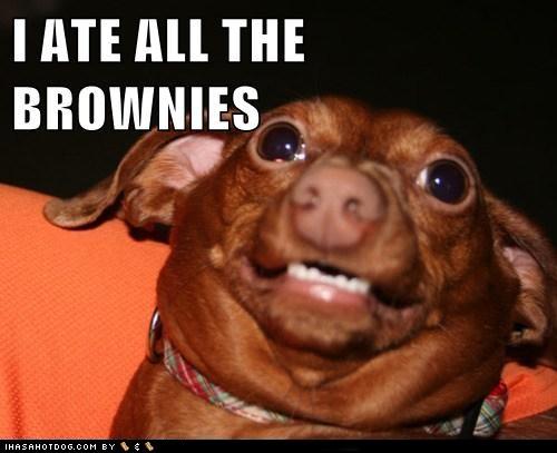 Brownies short story