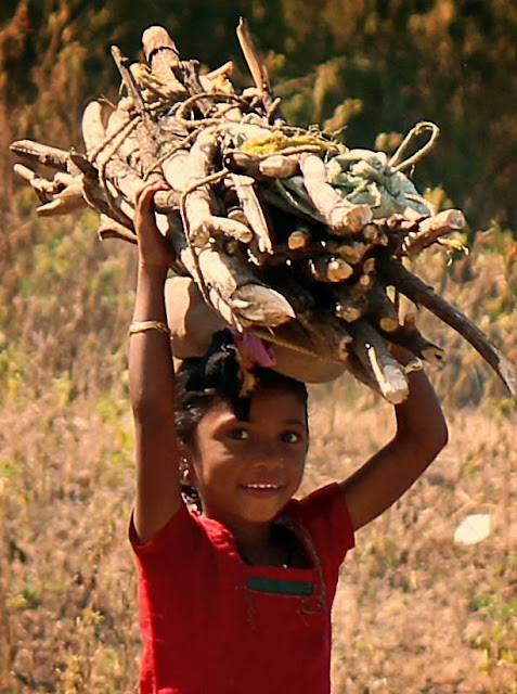 little girl carrying firewood