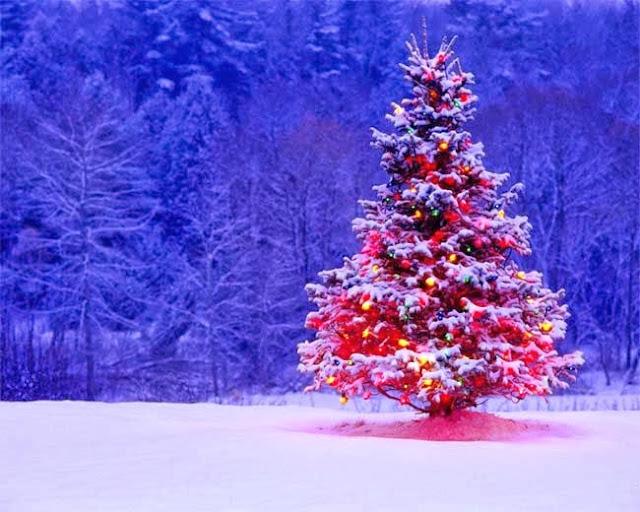 Merry Christmas image X-MAS tree
