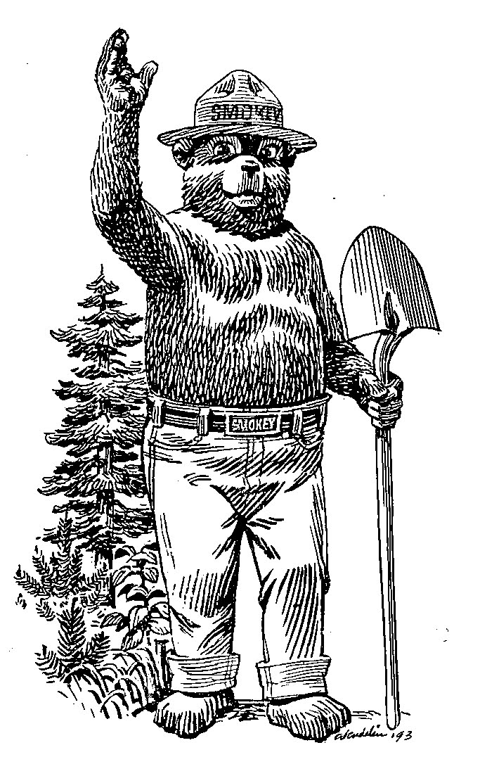 Smokey the bear coloring pages coloring pages for Smokey the bear coloring pages