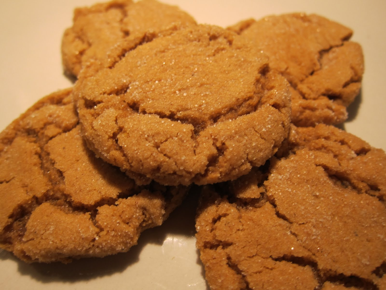 molasses cookies are the witches husband s favorite cookie ever his ...
