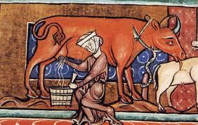http://1.bp.blogspot.com/-4bAWGc19mEs/TdFYbE9guwI/AAAAAAAAAAU/bzOAuwbeQAk/s320/medieval+women+working.jpg