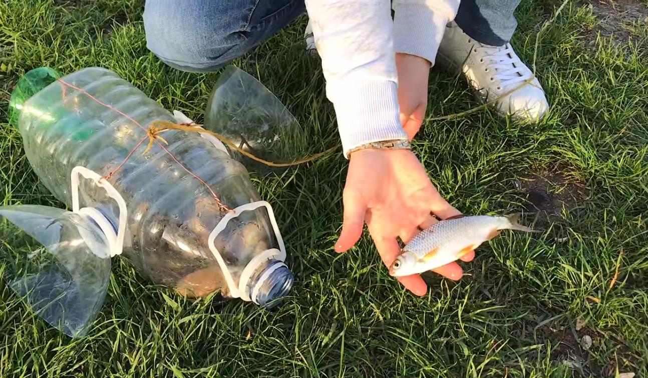 Как сделать самоловку для рыбы 464