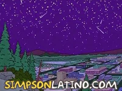 Los Simpson 14x16