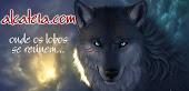 Lobos soltos