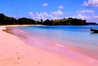 Pesona Pantai Pink Pulau Lombok