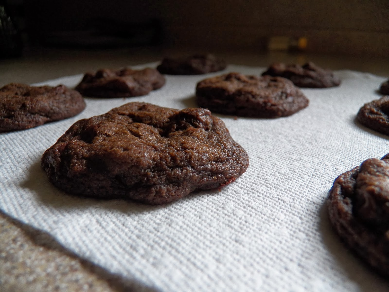 The Tasty Cheapskate: Double Chocolate Mint Cookies