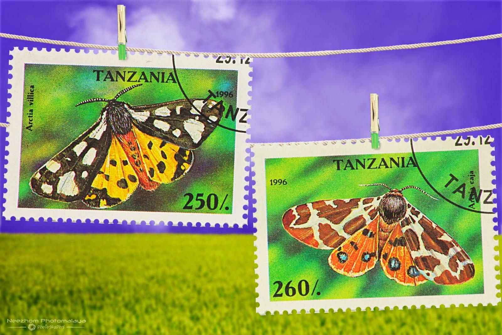 Tanzania Moth stamps 1996 - Arctia villica, Arctia caja